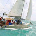 denebola-croisiere-sortie-mer-martinique-le-robert-voilier-palme-tuba-snorkeling-ecotourisme-bateau-2