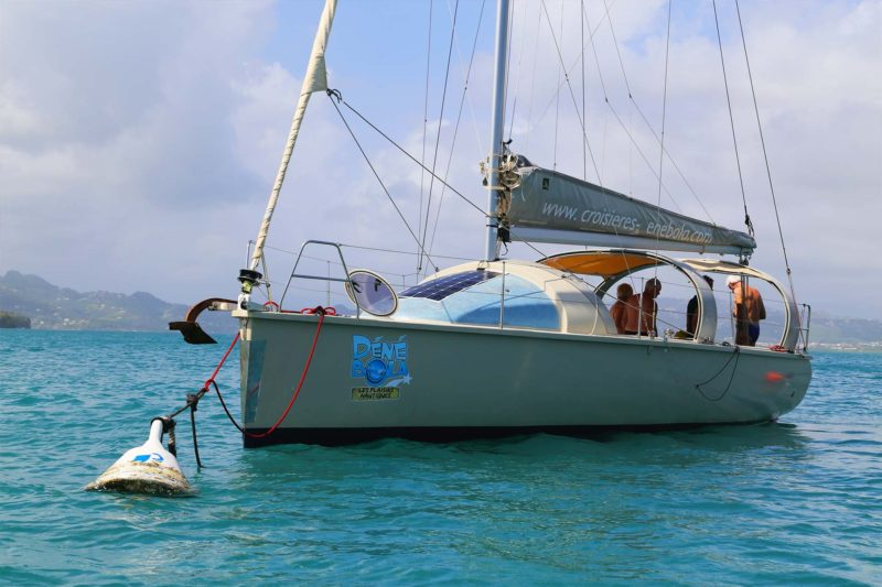 denebola-croisiere-sortie-mer-martinique-le-robert-voilier-palme-tuba-snorkeling-ecotourisme-bateau-8