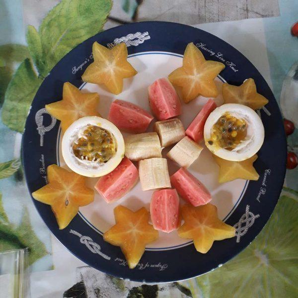 denebola-croisiere-sortie-mer-martinique-le-robert-voilier-palme-tuba-snorkeling-ecotourisme-option-repas